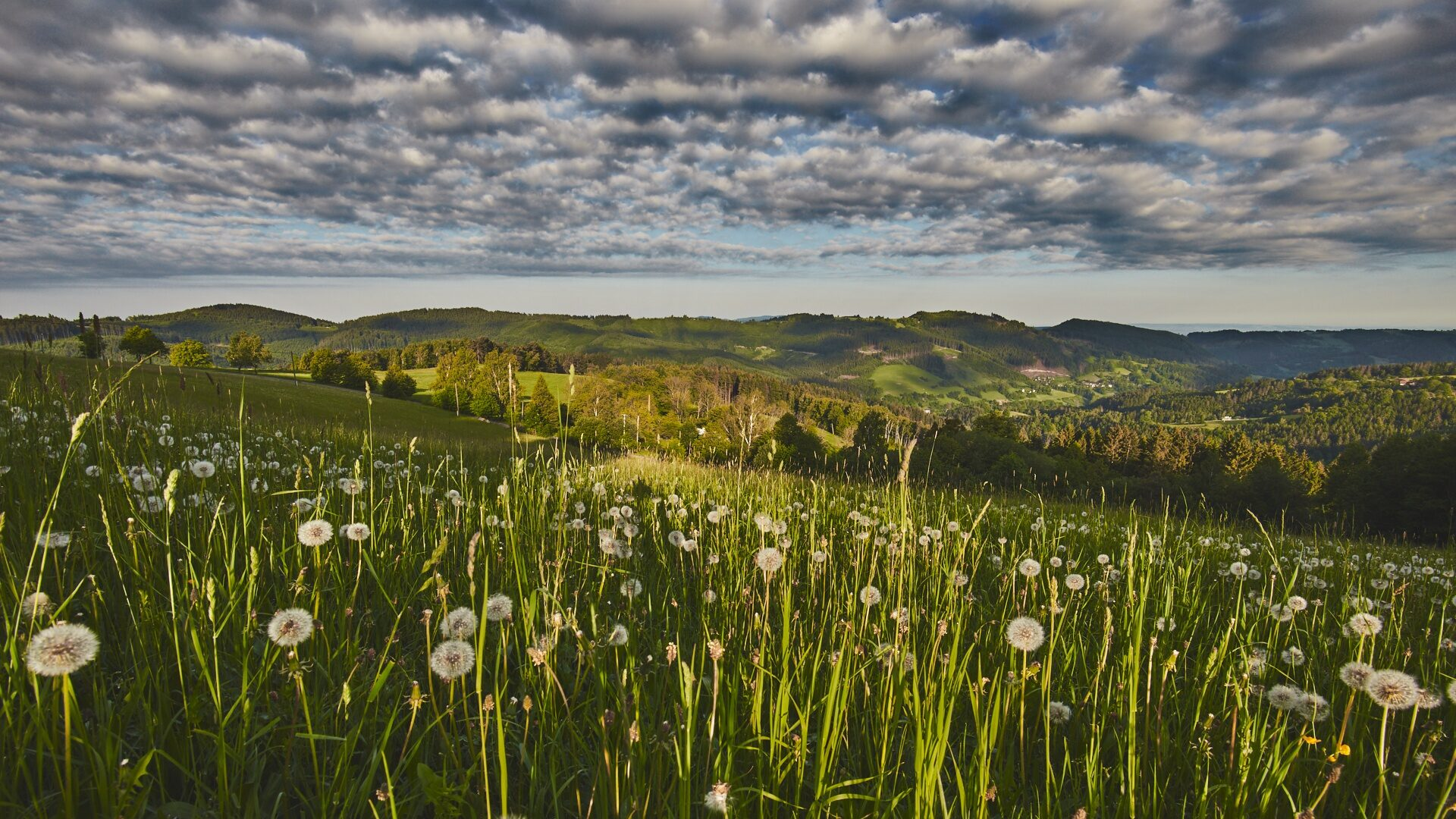 Pohled na část obce Malá Bystřice, v pozadí Svantovítova skála