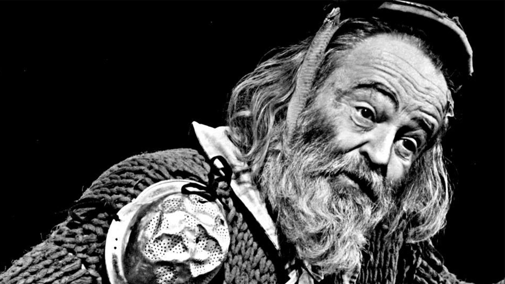 Don Kichot de la Anča